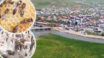 Orta Asya'nın kapısı Ardahan yatırımcı ve turist bekliyor